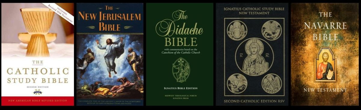Choosing a Catholic Study Bible